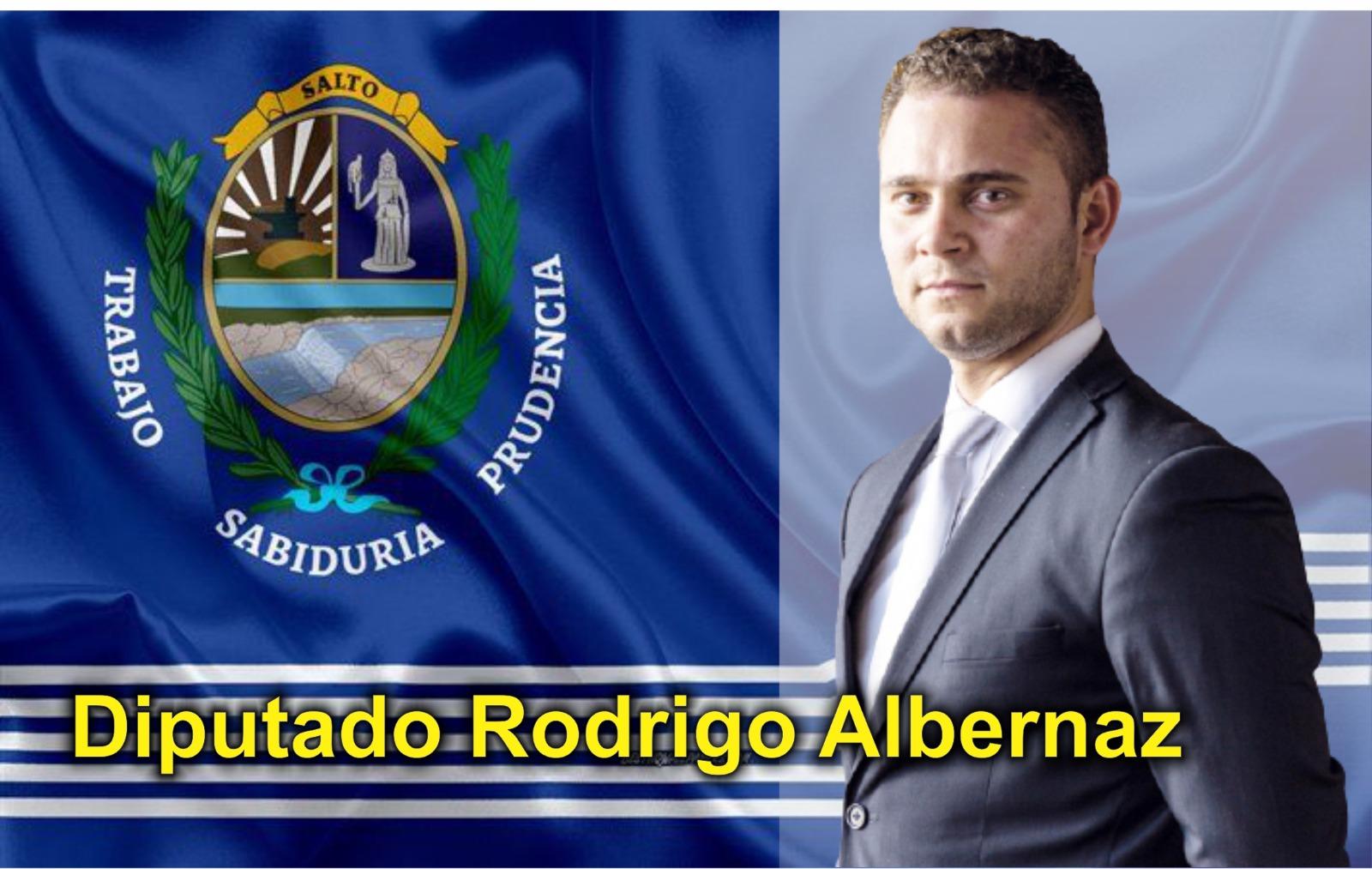 Rodrigo Albernaz | Diputado